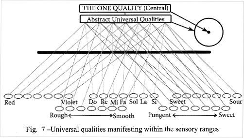 Qualités universelles se manifestant dans le domaine sensoriel. Image : Ibrahim Karim
