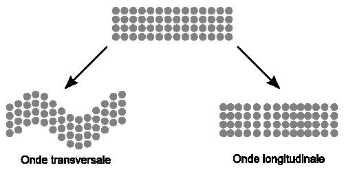typesdondes